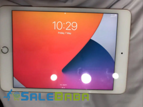 Apple iPad Mini 5  Golden Color Tablet Available For Sale