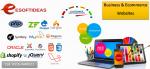 Ecommerce  Business website